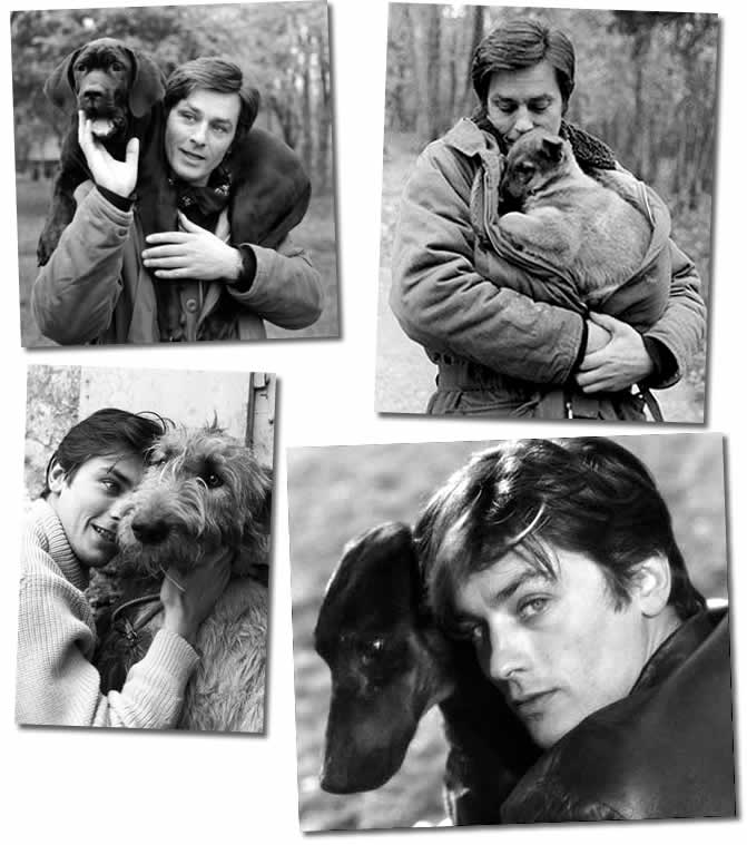 alain delon and dogs